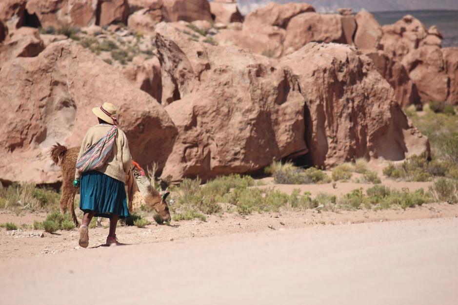 La Bolivie et ses paysages magnifiques